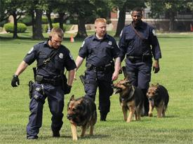 three police officers with police dogs
